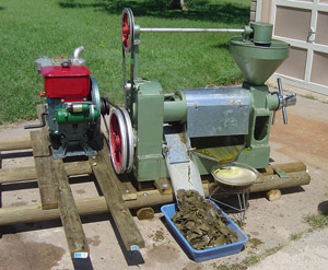 Oil Press with Diesel Motor