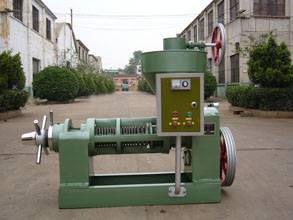 6YL-95 vegetable oil screw press