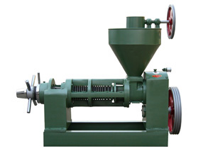 6YL-95 vegetable oil press